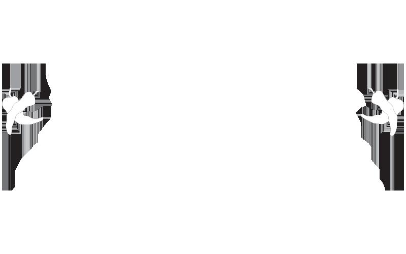 si-senor